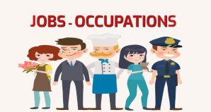 jobs-occupations-696x373